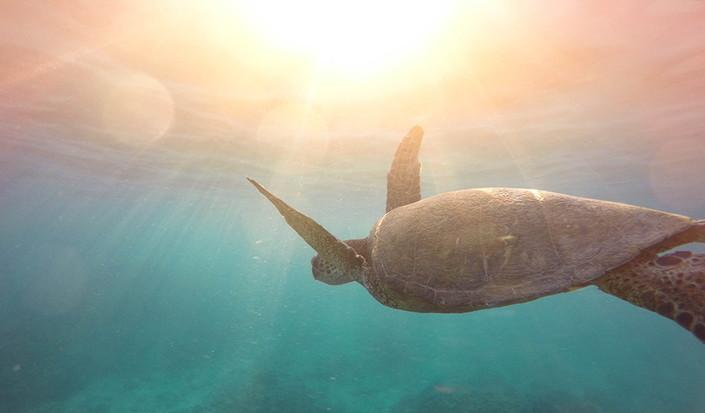 Kako i zašto smanjiti potrošnju plastike na jedrenju